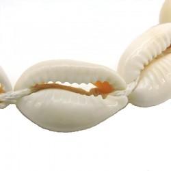 AVITA Bracelet coquillages cauris blanc